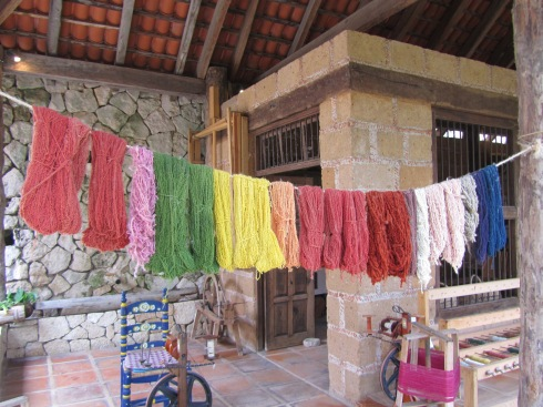 Natural Dyes Mexico